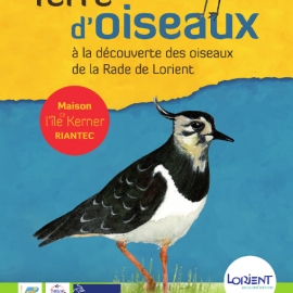 FESTIVAL «TERRE D'OISEAUX» DU 4 AU 7 FEVRIER 2016